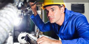 What is the Federal Skilled Trades Program?